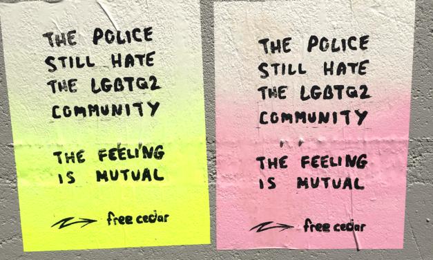 Déclaration de solidarité avec Cedar Hopperton et la communauté queer et trans radicale de Hamilton
