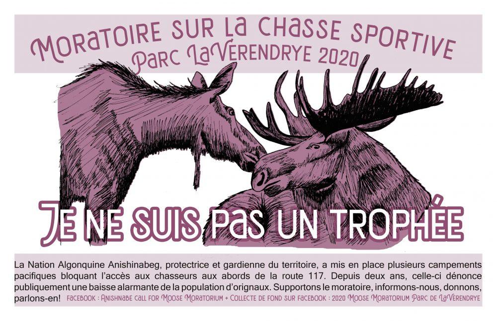 Affiche : Supportons l'appel Anishnabeg pour un moratoire à la chasse à l'orignal dans le Parc La Vérendrye